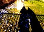 bild 1-vårpromenad-besk
