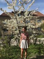 fedrakörsbärsträd1