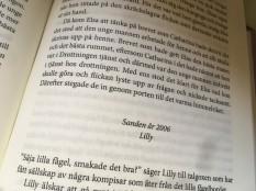 spegeln-text3