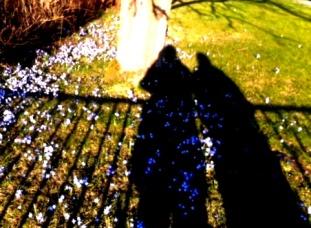 30-Vårpromenad i skarpt